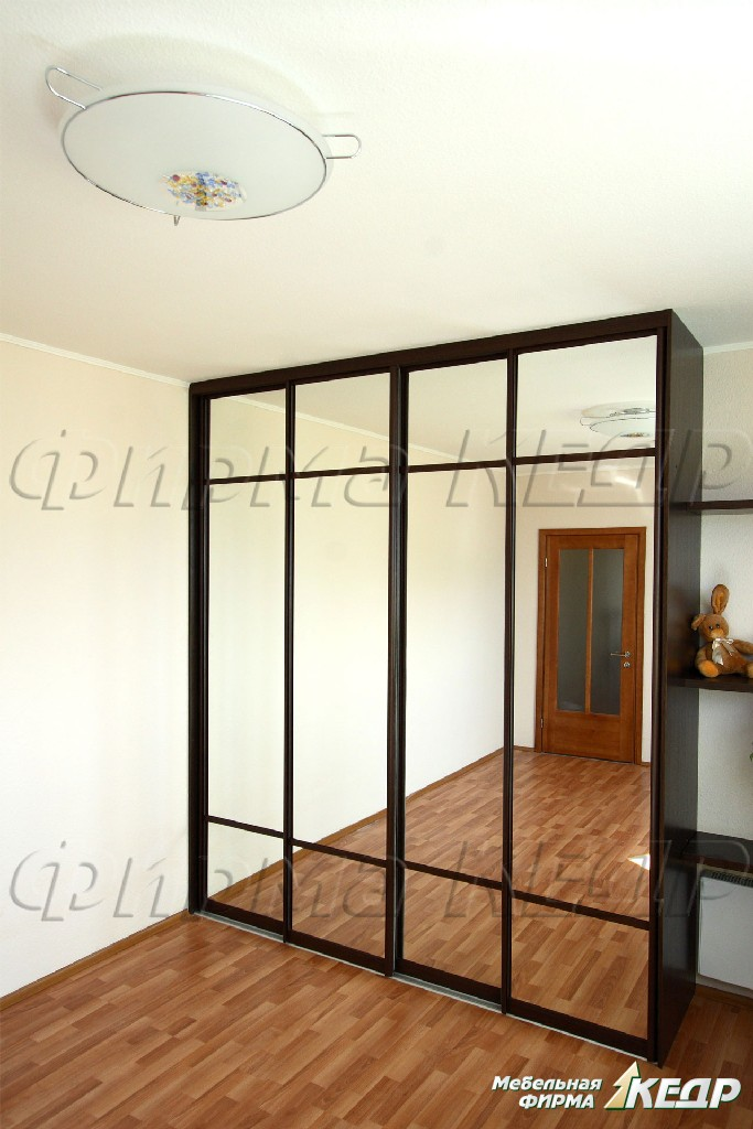 Шкафы с зеркальными дверями фото